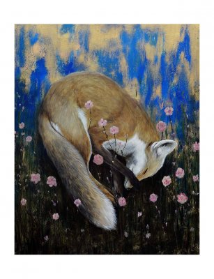 Fox Dream